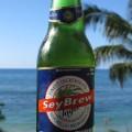 Seybrew bottle
